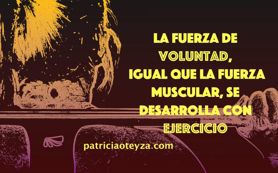 Voluntad - Patricia Oteyza Coach Personal.